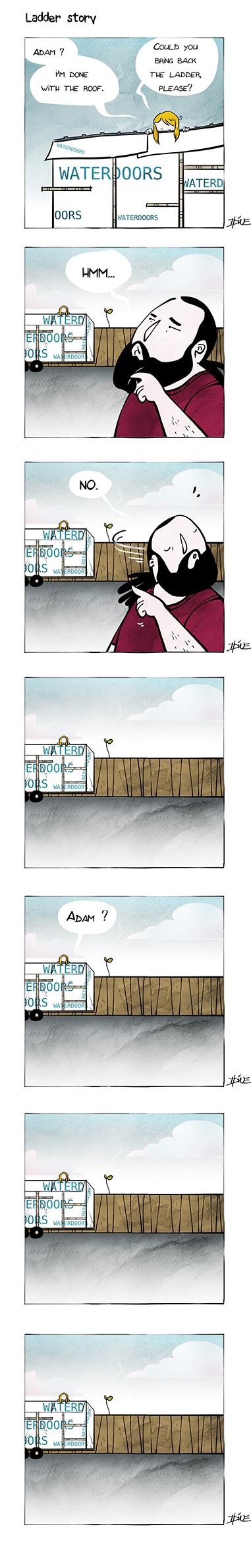 007 ladder web
