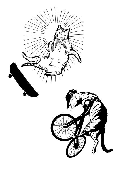 flash cat 2