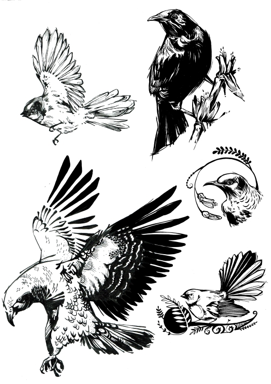 flash native birds